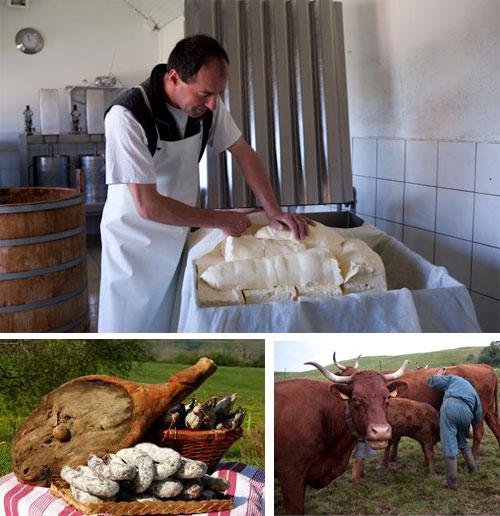 mosaique-produits-terroir-cantal